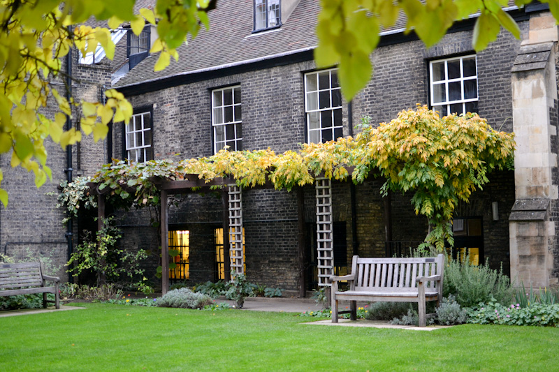 Ławeczka w Cambridge